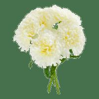 Bouquet Oeillet Artificiel Blanc x5