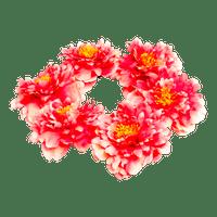 Headband Pivoine corail 35 cm