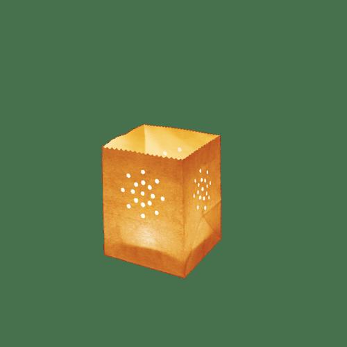 Maya Mini Orange x5