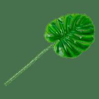 Feuille Tropicale PVC Monstera Vert