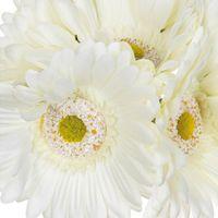 Bouquet Gerbera Artificiel Blanc x7