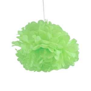 Pompons Jade 30cm x2