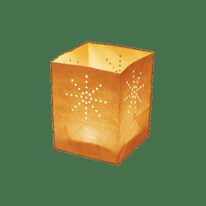 Maya Medium Orange x5
