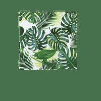 Serviette Papier Tropical Vert x20