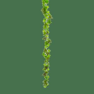 Guirlande de lierre 2 M