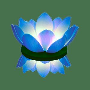 Nymphea LED Bleue