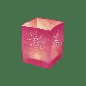 Maya Medium Rose x5