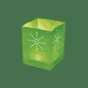 Maya Medium Vert x5