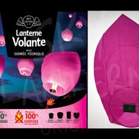 Balloon Rose x20