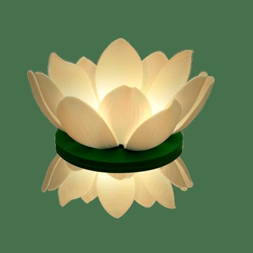 Lanterne Flottante Soirée Mariage & Fête, Anniversaire, Fête Nymphea Led Blanche (Lot De 3 Pièces)