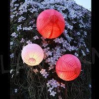 Boules + LED Roses
