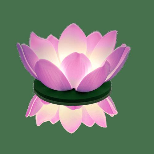 Lanterne Flottante Soirée Mariage & Fête, Anniversaire, Fête Nymphea Led Parme (Lot De 3 Pièces)
