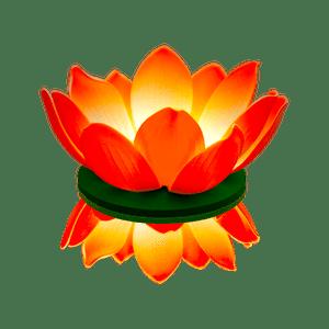 Nymphea LED Orange