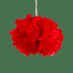 Pompons Rouge 30cm x2