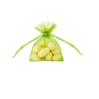 Sachet Dragées Organza Vert Anis x20