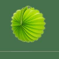 Deco Soirée Mariage & Fête, Anniversaire, Fête Lampion Rond 20 Cm Vert (Lot De 10 Pièces)